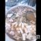 殿町キャバクラ ELECT(エレクト) ちかの動画「バーベキューで」