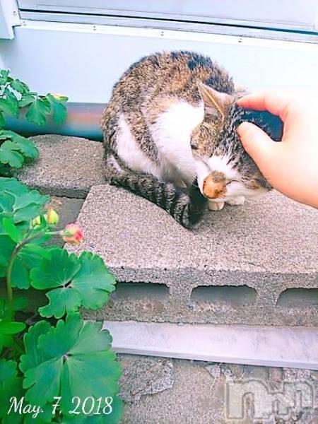 松本デリヘルPrecede(プリシード) さや(28)の5月10日写メブログ「恵みの雨音♪」