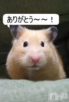新潟デリヘル激安!奥様特急  新潟最安!(オクサマトッキュウ) よしみ(37)の2018年10月14日写メブログ「ありがとうございました」