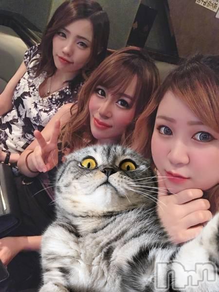 新潟駅前キャバクラDiletto(ディレット) いぶきの3月5日写メブログ「猫」