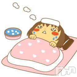 高田キャバクラDream(ドリーム) の2019年2月12日写メブログ「0212」