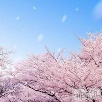 高田キャバクラ Dream(ドリーム) ひかるの3月8日写メブログ「0308」