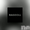 高田クラブ・ラウンジ Ragdoll (ラグドール)の7月14日お店速報「また動画作りました」