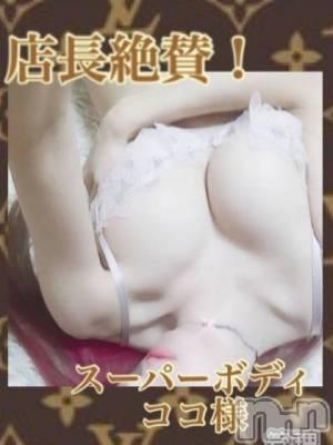ココ☆様(28) 身長160cm、スリーサイズB84(F).W56.H83。 新潟風俗出張アロママッサージ在籍。