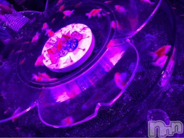 長岡デリヘル長岡デリヘル NicoNico(ナガオカデリヘルニコニコ) 【新人】リノ(25)の8月19日写メブログ「アクアリウム」