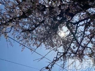上越メンズエステ 上越風俗出張アロママッサージ(ジョウエツフウゾクシュッチョウアロママッサージ) かなた☆(40)の3月30日写メブログ「おはようございます」