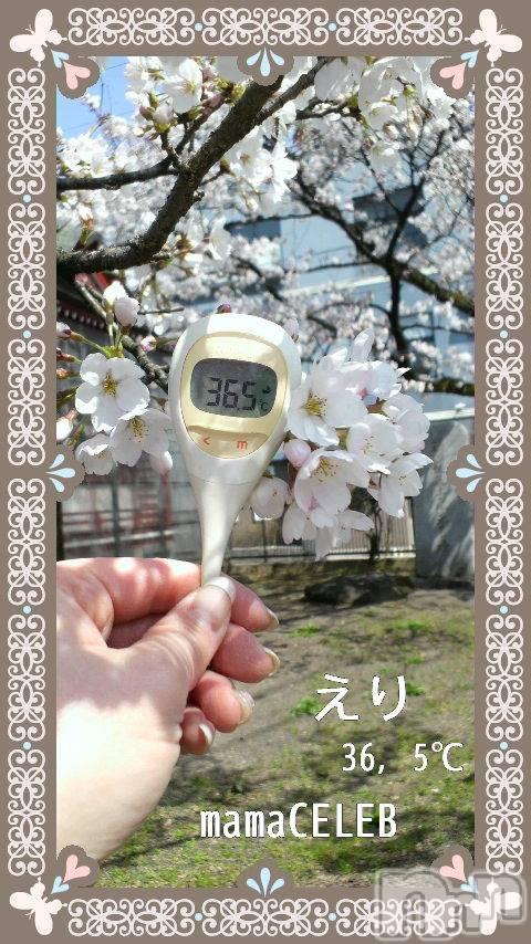 長岡人妻デリヘルmamaCELEB(ママセレブ) えり(40)の4月1日写メブログ「☆桜と共に♪☆」