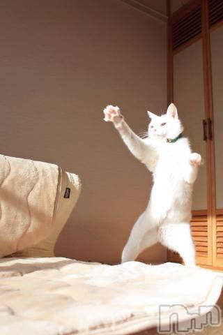 新潟デリヘルオンリーONE(オンリーワン) 若奈★人気美人妻(38)の3月23日写メブログ「マジすか!?」