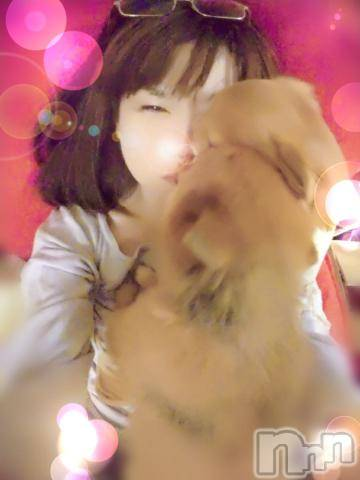 新潟デリヘルオンリーONE(オンリーワン) 若奈★人気美人妻(38)の4月9日写メブログ「犬だんご( ・∇・)」