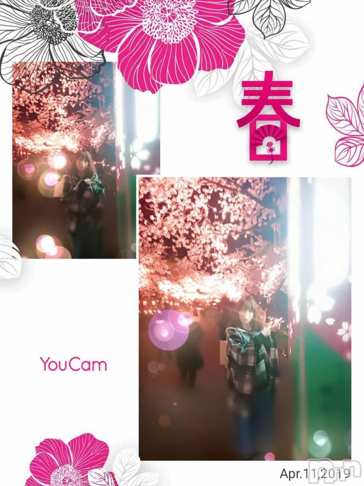 新潟デリヘルオンリーONE(オンリーワン) 若奈★人気美人妻(38)の4月12日写メブログ「満開ですよー(^◇^)」