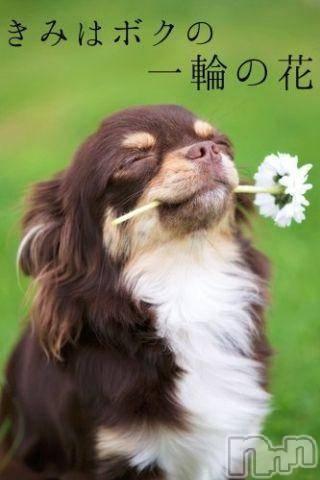 新潟デリヘルオンリーONE(オンリーワン) 若奈★人気美人妻(38)の8月31日写メブログ「明日も感謝ー」
