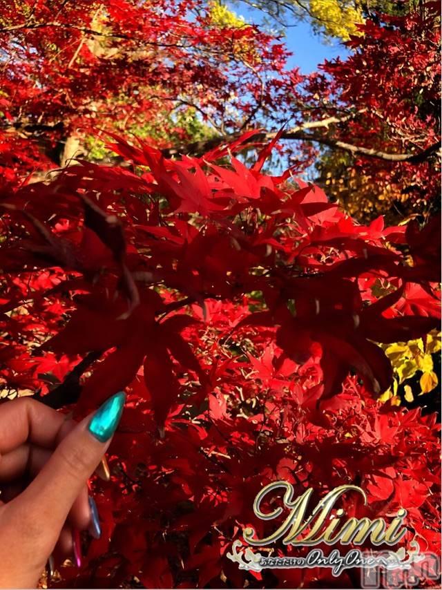 長岡デリヘルMimi(ミミ) 【チョコ】(24)の11月18日写メブログ「*昨日覚えた紅葉狩り♡♡*」