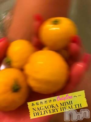 長岡デリヘル Mimi(ミミ) 【チョコ】(24)の12月29日写メブログ「『おはようごじゃります😇❤️🎀』」