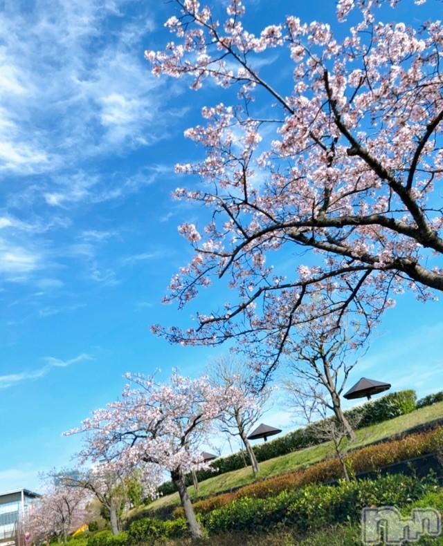長岡デリヘルMimi(ミミ) 【チョコ】(24)の2021年4月9日写メブログ「『チョコちゃんの休日編🥰💞』」