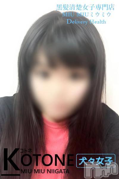ことね(18)のプロフィール写真1枚目。身長165cm、スリーサイズB85(D).W58.H85。新潟デリヘルMIU MIU(ミウミウ)在籍。