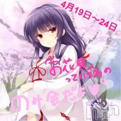 権堂ガールズバーBAR CHEERS(バー チアーズ)の4月23日お店速報「最終日!見納め!?お花見という名の飲み会だよぉぉおおおおお!」