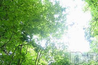 長野エステ派遣Parisie-パリジェ-(パリジェ) ゆずき(34)の2018年4月17日写メブログ「ありがとうございました♡」
