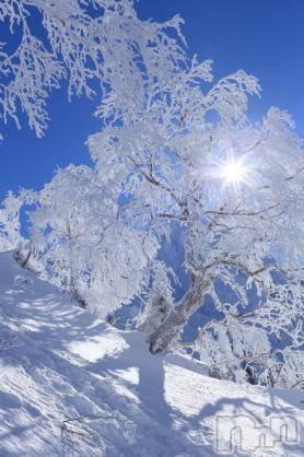 古町ガールズバーchou chou(シュシュ) ナナエの1月14日写メブログ「今年は暖冬」