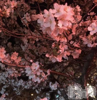 長野メンズエステ Ajna長野(アジュナナガノ) 和泉   まい(27)の4月2日写メブログ「明日出勤^^*」