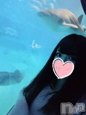 新潟デリヘル NiCHOLA(ニコラ) みく(20)の10月17日写メブログ「好きな場所♡」