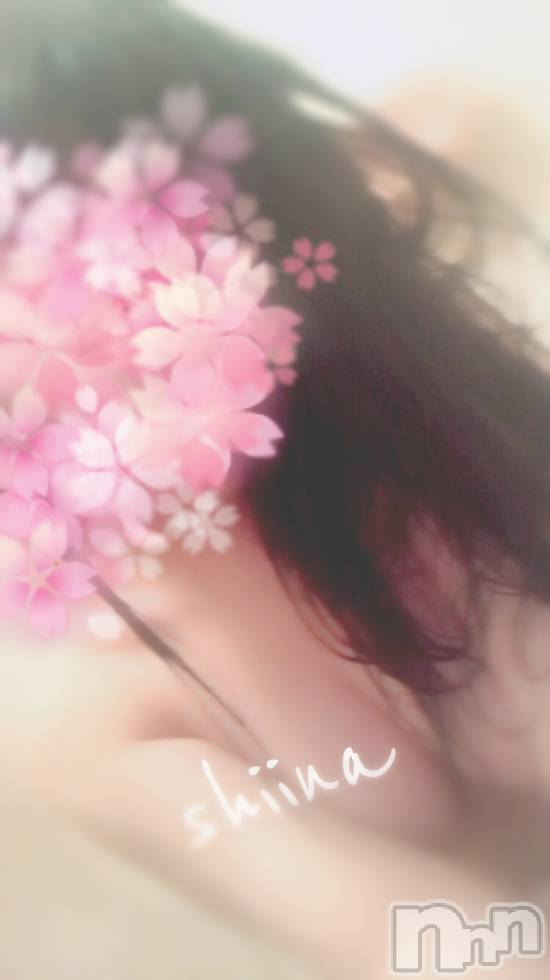 新潟デリヘルA(エース) 新人 しいな(18)の4月23日写メブログ「ふっかーつ(´˘`๑)♡」