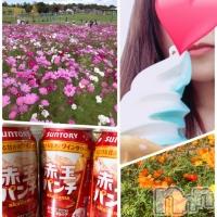 高田キャバクラ Dream(ドリーム) 蓮の10月13日写メブログ「いまさら〜☆」