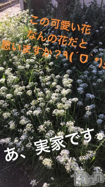 古町ホスト・ボーイズバーA151(エーイチゴ−イチ) 桜咲☆春の9月13日写メブログ「君の名は?」