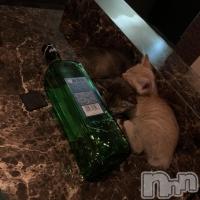 殿町クラブ・ラウンジ Night Lounge Roze(ナイトラウンジロゼ) 93ママの6月24日写メブログ「新しい招き猫」