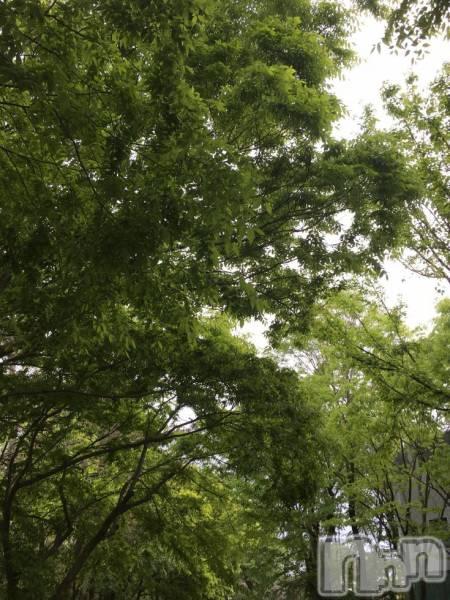 新発田キャバクラporta(ポルタ) 椎名 舞の5月7日写メブログ「癒し」