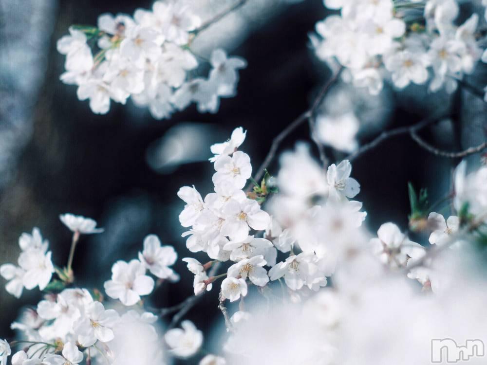 長岡デリヘル純・無垢(ジュンムク) 新人☆ねむ(20)の4月15日写メブログ「GWまであと少し(  '?' )」