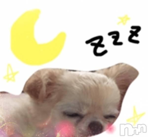 伊那キャバクラAzur Cafe(アジュールカフェ) さりなの7月4日写メブログ「☆おやすみなさぁい(⁎ᵕᴗᵕ⁎)zzz」