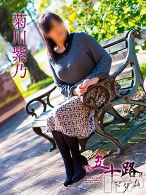 菊川紫乃(51) 身長150cm、スリーサイズB94(F).W77.H96。 五十路マダム新潟店(カサブランカグループ)在籍。