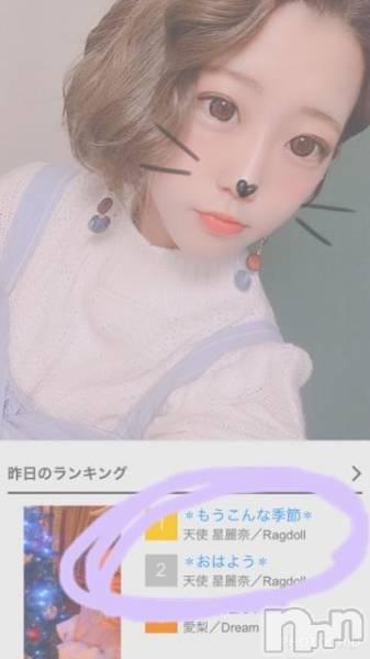 高田クラブ・ラウンジRagdoll (ラグドール) 天使  星麗奈の12月5日写メブログ「✽ありがとう☺︎✽」
