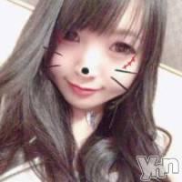 甲府ソープ 石亭(セキテイ)の2月8日お店速報「テコキノダンス」