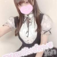 甲府ソープ 石亭(セキテイ)の10月17日お店速報「アンダースタンド?」