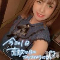 甲府ソープ 石亭(セキテイ)の11月15日お店速報「当たりしかいない!!」