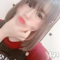 甲府ソープ 石蹄(セキテイ)の9月15日お店速報「おススメ泡姫♥よりどりみどり♥」