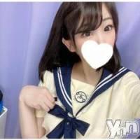 甲府ソープ 石蹄(セキテイ)の10月12日お店速報「毎日可愛い女の子が盛りだくさん♥」
