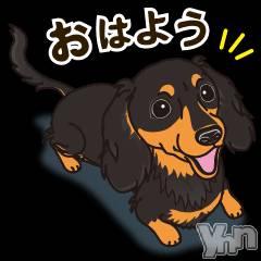甲府キャバクラEntertainment Club HANA英BUSA(エンターテイメントクラブ ハナブサ) の2019年6月14日写メブログ「6月14日 20時53分の写メブログ」