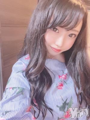 めろでぃ(21)