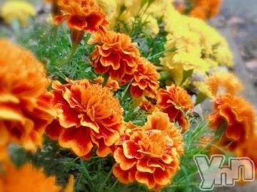 甲府ソープ オレンジハウス さや(21)の11月8日写メブログ「お礼?」