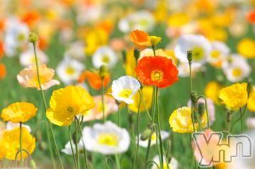 甲府ソープ石亭(セキテイ) さや(21)の2020年11月22日写メブログ「お礼?」