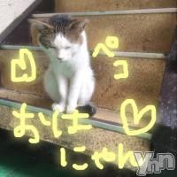 甲府ソープ BARUBORA(バルボラ) こゆき(ヒミツ)の7月22日写メブログ「にちよーび」